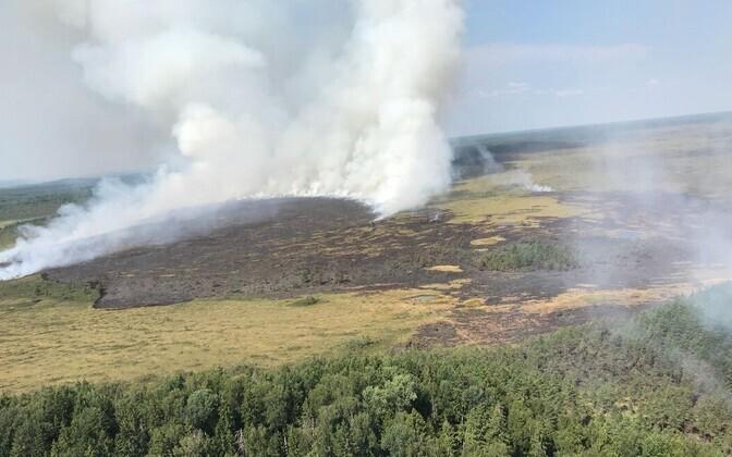 Пожар в Латвии, рядом с Эстонией.