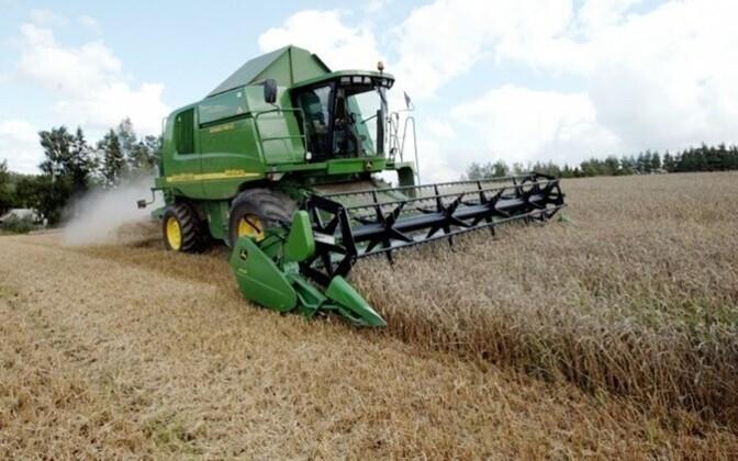 В Эстонии собрали рекордный урожай зерновых