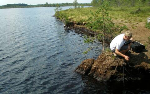 Kuuma ilma tagajärjel surnud kalu sel korral Saaremaa ja Hiiumaa lahesoppidest ei leitud.