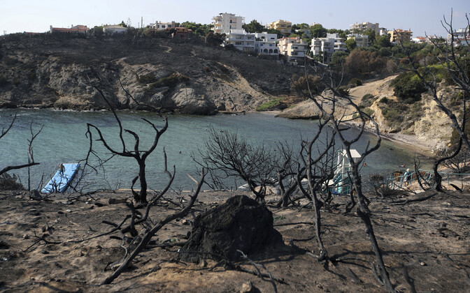 Metsapõlengu tagajärjed Ateena lähistel Rafinas.