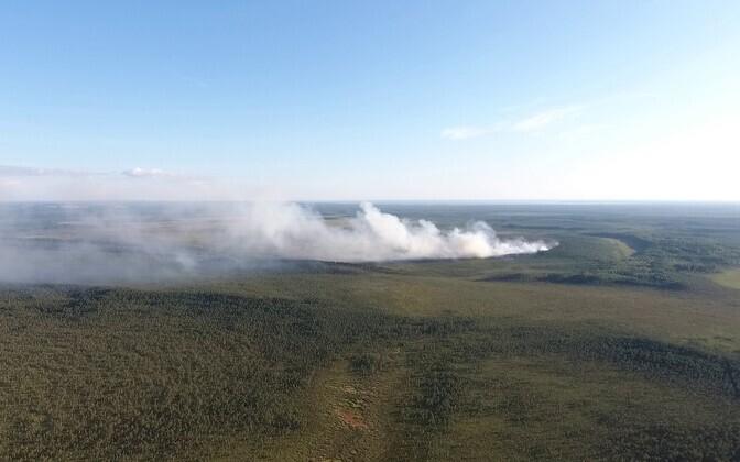 Droonipilt reede õhtul tuule toel intensiivistunud põlengualast rabas.