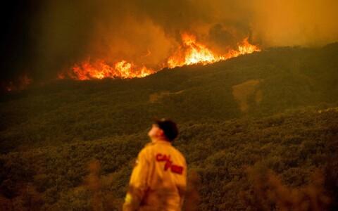 Kuum ja kuiv ilm on sel suvel põhjustanud nii Euroopas kui mujal maailmas hulganisti maastikutulekahjusid.