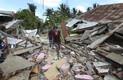 Maavärin Indoneesias Lomboki saarel on saanud üle 350 järeltõuke.