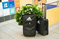 Odaviske EM-pronks Magnus Kirt jõudis tagasi Eestisse.