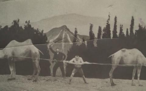 Georg Lurich ja kaamelid.