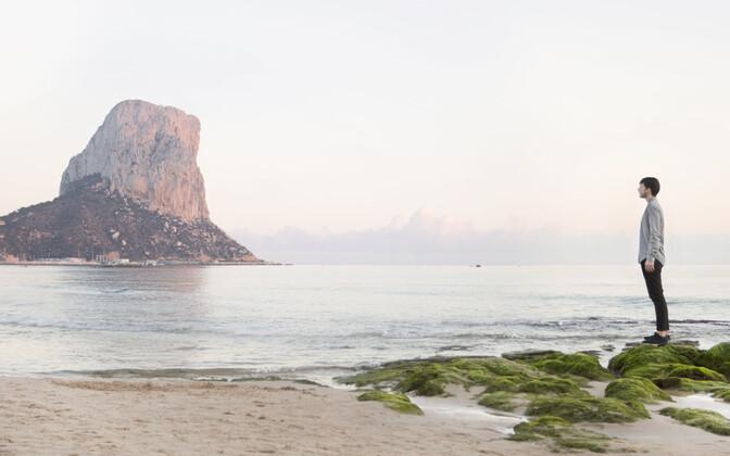 Alicante rannajoon