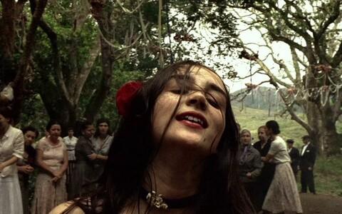 Brasiilia filmipäevad