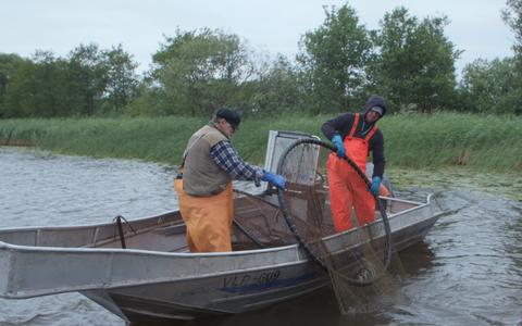 Kalamehi ja niisama paadiga jõenautijaid on Emajõel järjest rohkem.