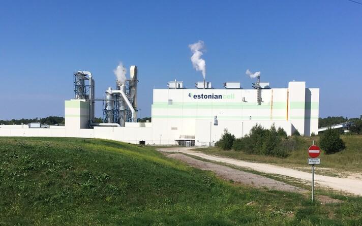Целлюлозный завод Estonian Cell в Кунда.