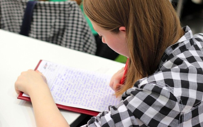 Faktide ja uute teadmiste õppimine koolis on omaette vajalik selleks, et oskuslikult ja tõhusalt kasutada ka internetti teadmiste ammutamisel.