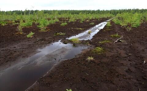 Jääksoo ei taastu ka ligi 30 aastaga turbakaevandamine mõjudest. Selliselt pinnaselt toimub endiselt süsinikgaaside eraldumine.