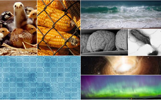 8 ideed, mis muutsid maailma.