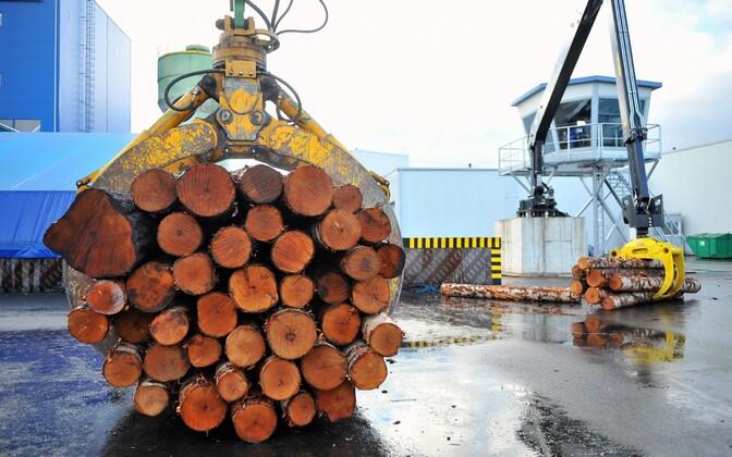 Завод будет производить до 50 000 кубометров фанеры в год.