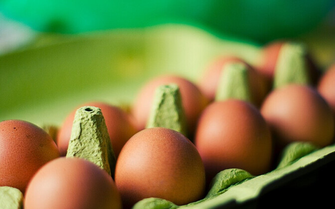 2014. aastal leiti salmonellat 2,2% testitud munadest või munatoodetest.