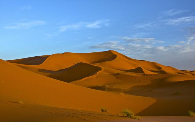 Praegu on Sahara kõrb, tühi ja paljas.