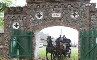8a85fe5a711 Toris selgusid parimad eesti tõugu hobused   Raadiouudised   ERR