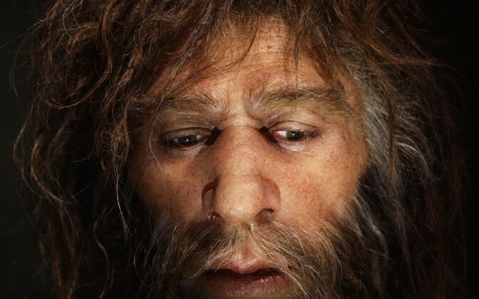 Hüperrealistlik neandertallase rekonstruktsioon.