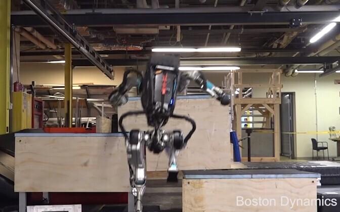 Robot Atlas parkuurimas.