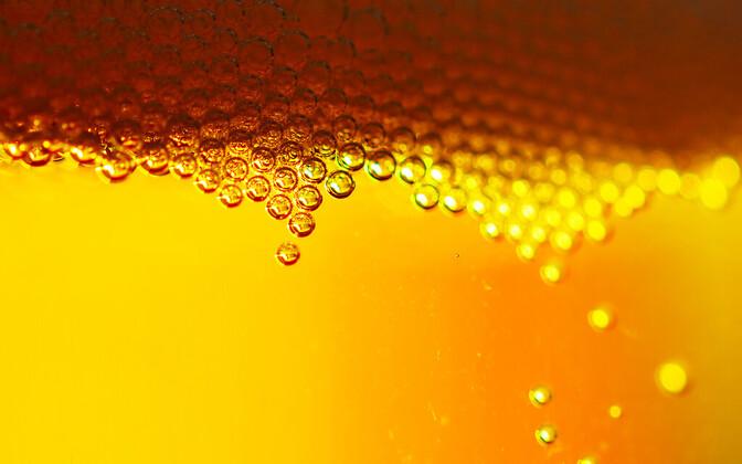 Õlle hind võib kasvada sellel sajandil oluliselt ja mitte ainult aktsiiside tõttu.