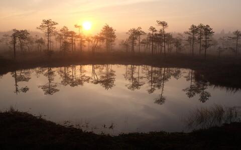Rubina raba vee väljavoolud on kuivenemise kaitseks tõkestatud pinnasevallidega.
