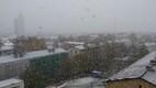 Lumesadu Tartu kesklinnas
