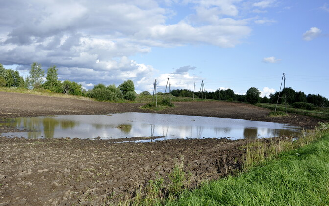 Üleujutatud põld Latgale piirkonnas eelmise aasta suvel.