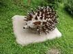 Litene. Foto autor: Litene mõisa südames on kiviehete töökoda . Kivid on kohalikud ja kohalik käsitöö. Keskusest 1 km kaugusel on tubli memm kes ehitab kõike tühjadest klaaspudelitest
