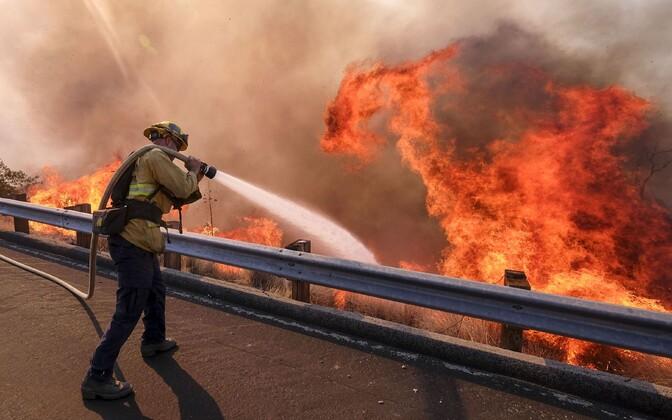 Tuletõrjuja Californias.