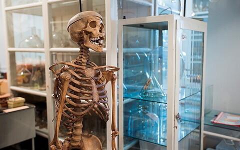 Tartu Ülikooli muuseumikogudes leidub palju põnevat.