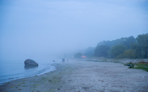 Местами туман, моросящий дождь.