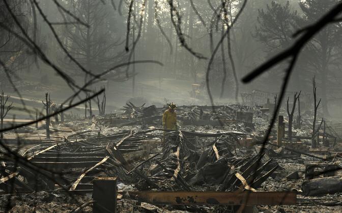 Tulekahjus hävinenud Paradise City, kust tuletõrjuja otsib hukkunuid.