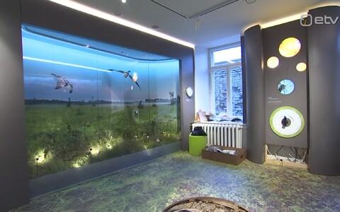 Loodusmuuseumis saab tutvuda Eesti soodega.