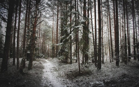 Снег в Вильянди
