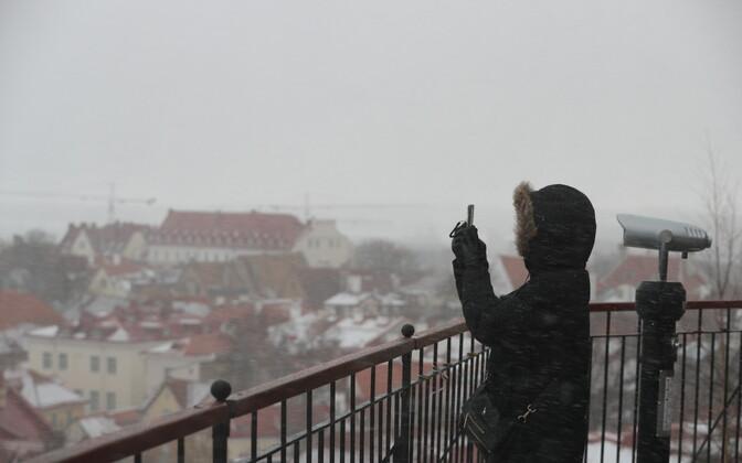 Turist Toompea vaateplatvormil novembrilõpu lörtsi trotsimas