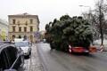 Jõulupuu teekond TartuRaekoja platsile