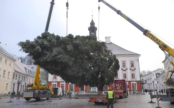 Tartu's Christmas tree being installed in 2018.