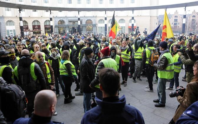 Протесты в Брюсселе.