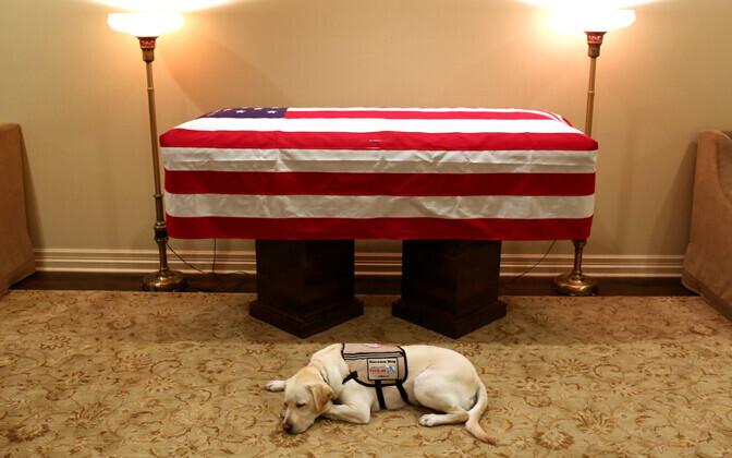 Teenistuskoer Sully George H.W. Bushi kirstu juures.
