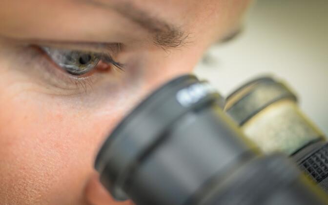 К 2020 году Эстония хочет вкладывать в науку 3% от ВВП.
