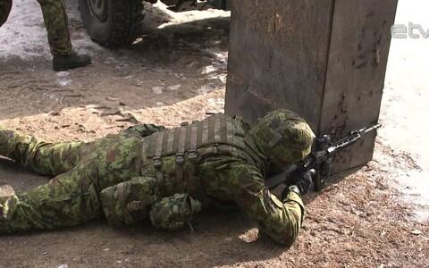 Силы обороны Эстонии