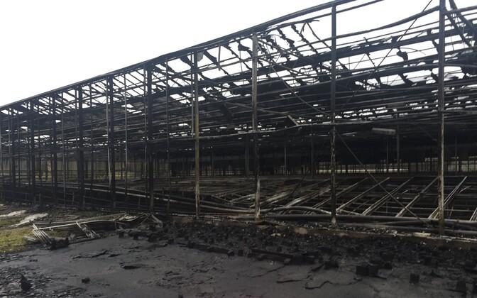 Последствия пожара в теплице Nurmiko.