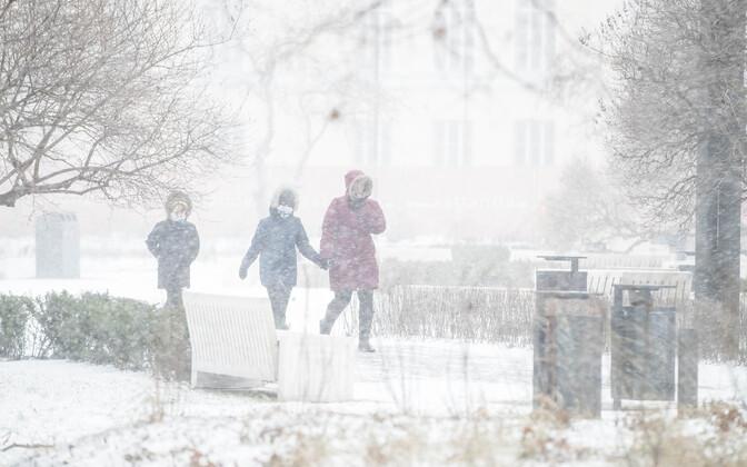 Штормовой ветер и метель в Таллинне.