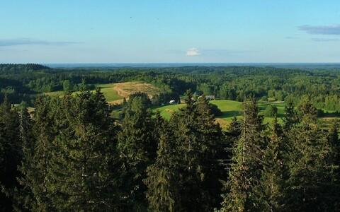 Kõige rohkem üllatas teadlasi Kagu-Eesti eraldumise tugevus.