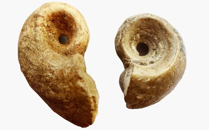 Vasakul pool on Viimsi rauaaegsest tarandkalmest ning paremal Iru pronksi- ja rauaaegsest linnusest leitud gastropoodi (teo) fossiil. Viimast on kasutusjälgede järgi otsustades ilmselt kantud nahariba otsas ja tõenäoliselt on tegu amuletiga.