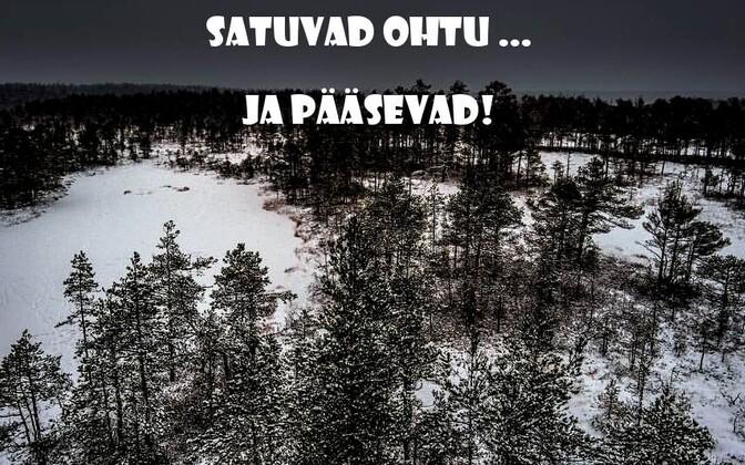 Семь детей заблудились в лесу.