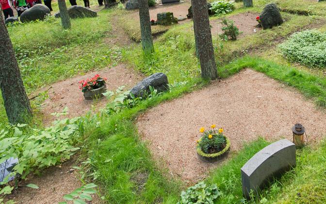 Таллиннское кладбище Метсакальмисту.
