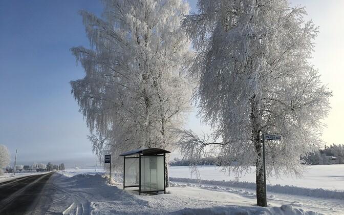 Bussipeatus Järvamaal Röa külas.