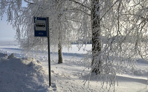 A bus stop at Röa village in Järva County on Tuesday morning.