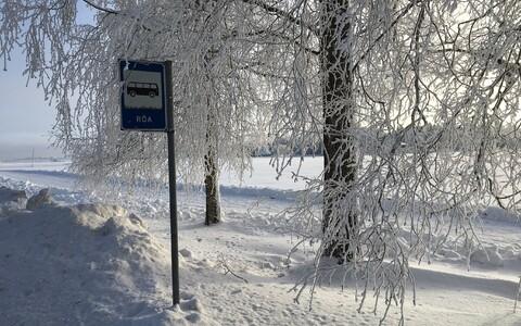 Pakaseline 22. jaanuar Järvamaal Röa külas