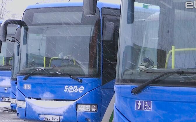Автобусы фирмы SEBE.